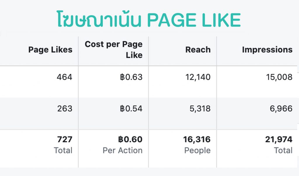 Facebook Page Like Cost